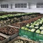 Фото Монтаж холодильного оборудования для овощехранилищ.... Симферополь Крымхолодсервис