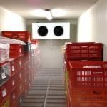 Холодильные сборно - разборные камеры из панелей сендвич.Установка, гарантия.