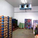 Фото Морозильный, холодильный склад в Крыму под ключ.Установка,... Повсеместно Крымхолодсервис