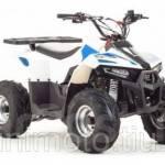 Фото Подростковый квадроцикл Mud Hawk 110cc... Москва MiniMoto