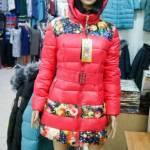 Фото Куртка женская ЕвроЗима (утеплитель холлофайбер), р.ряд... Новосибирск Интернет магазин