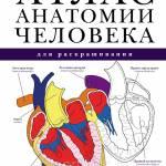 Фото Атлас анатомии человека для раскрашивания... Москва Интернет-магазин SuperLarek.ru