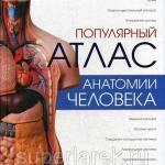 Фото Популярный атлас анатомии человека... Москва Интернет-магазин SuperLarek.ru