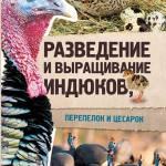 Фото Разведение и выращивание индюков, перепелок и цесарок... Киров Подворье