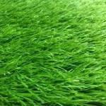 Фото Искусственная трава 60 мм... Краснодар ООО Северный Кристалл