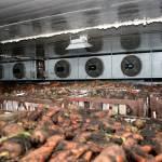 Фото Воздухоохлодители для овощехранилищ, холодильных камер.... Симферополь Крымхолодсервис